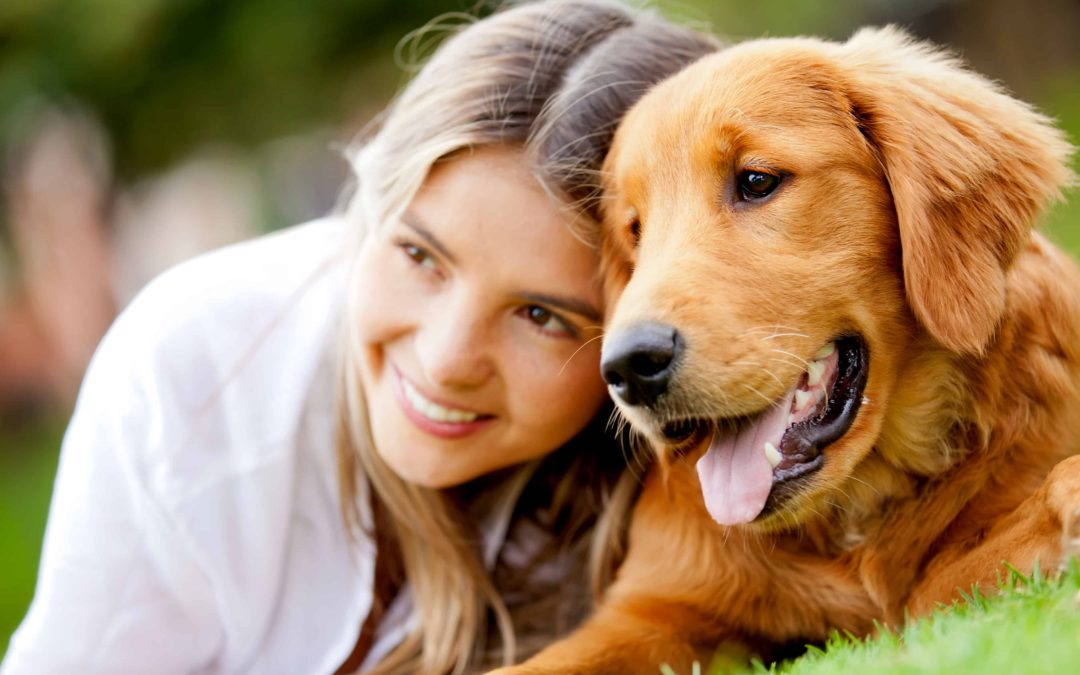 Why Dog Owners Have So Much to Be Thankful For