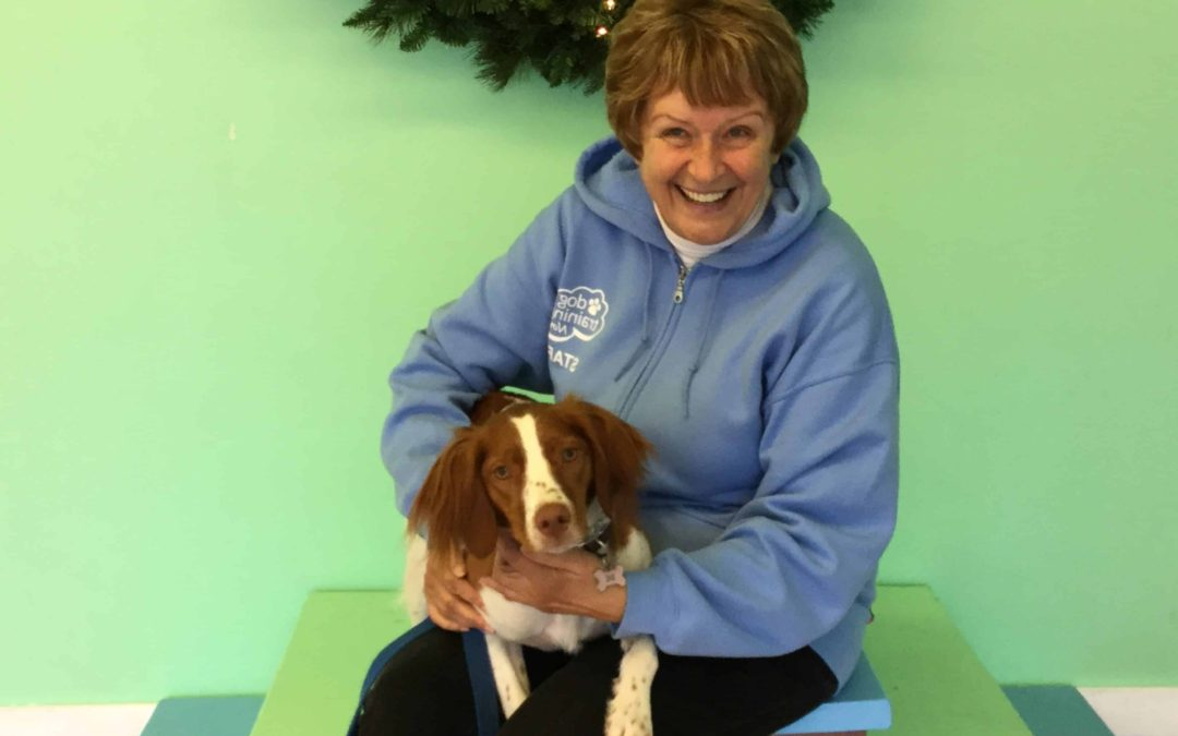 Meet the Dog Training Now Staff: Jackie