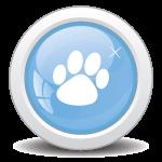 Dog Training Now- Dog Training Programs-Nuisanace Barking