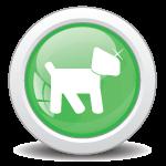 Dog Training Now- Dog Training Programs-Pulling while walking