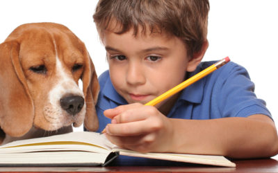 Back to School Tips for Your Dog