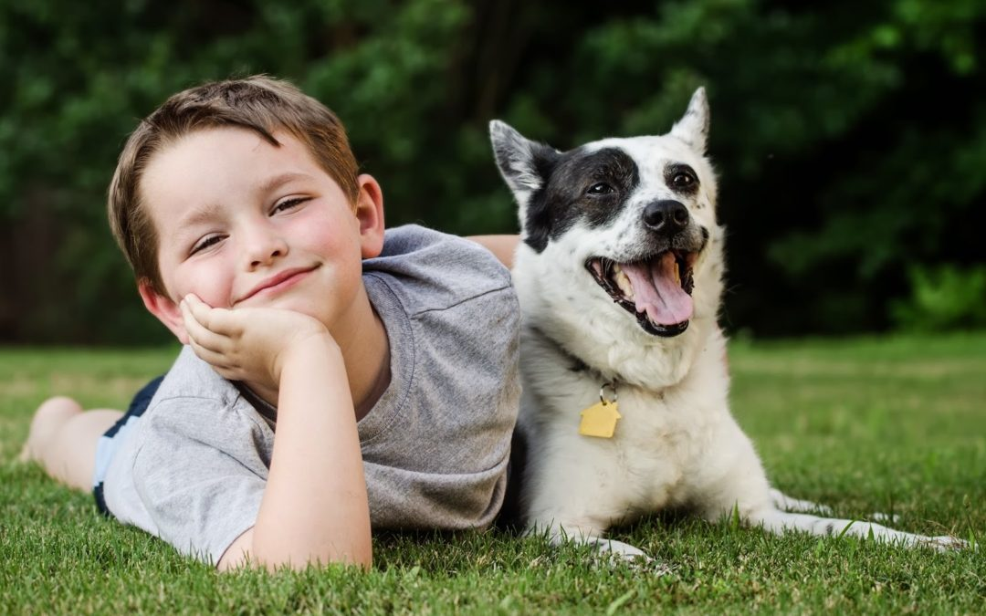 What Your Child Needs to Know About Interacting with Dogs